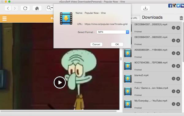 Download Funny Vine Videos on Mac
